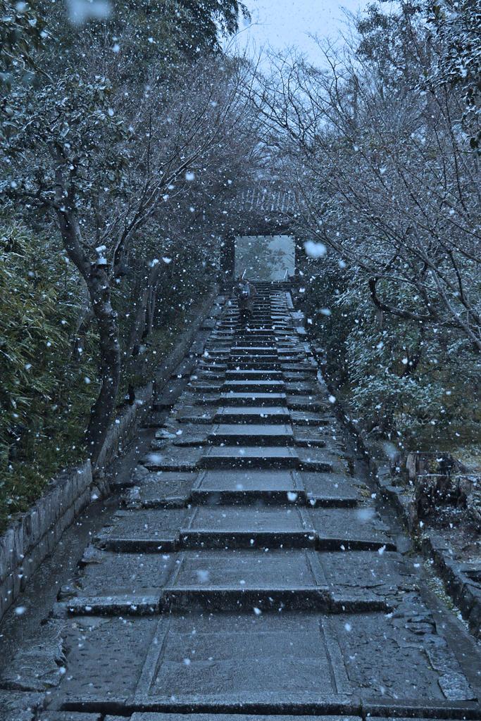 高台寺 雪の写真素材