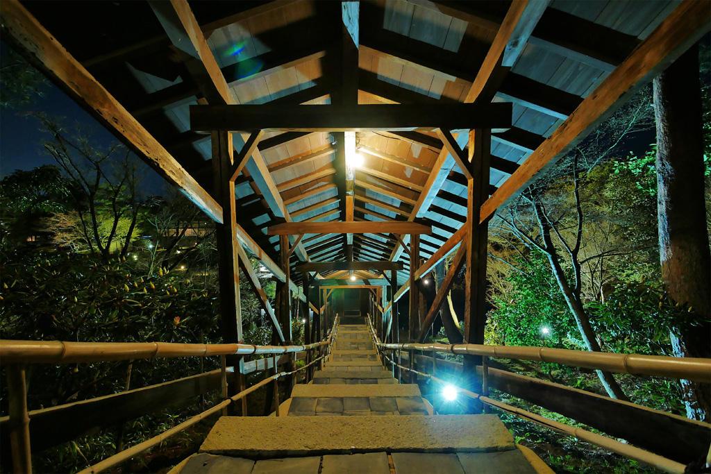 高台寺 臥龍廊 ライトアップの写真素材