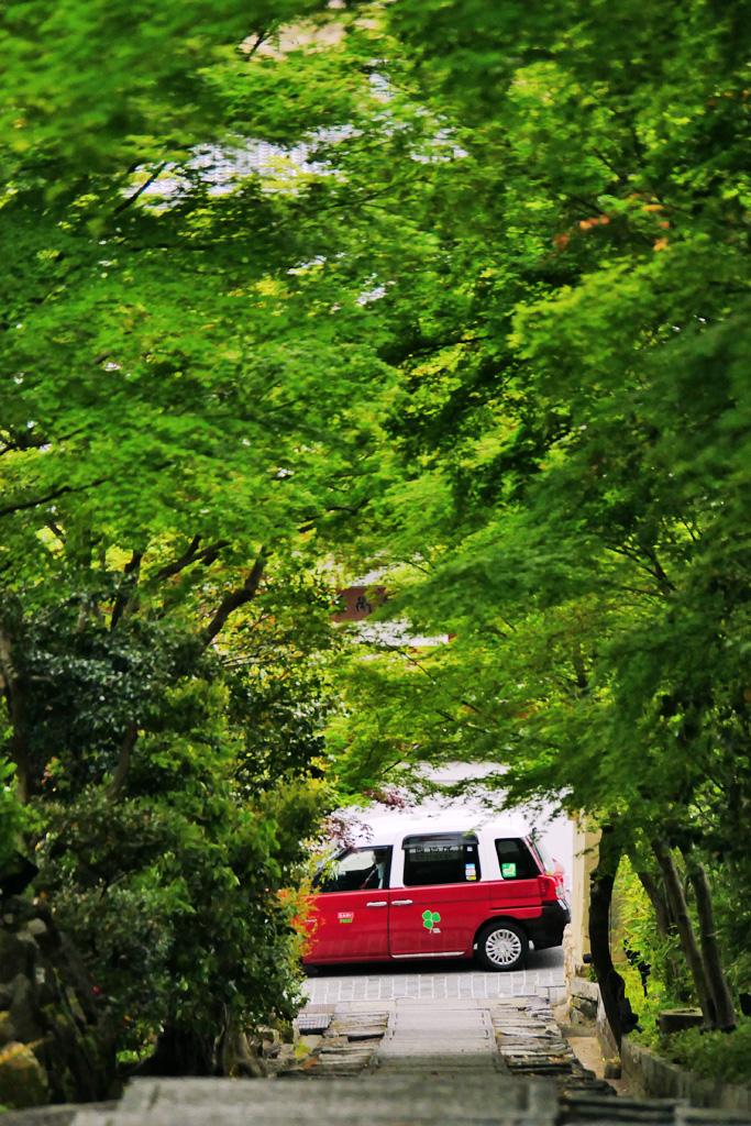 ねねの道の写真素材