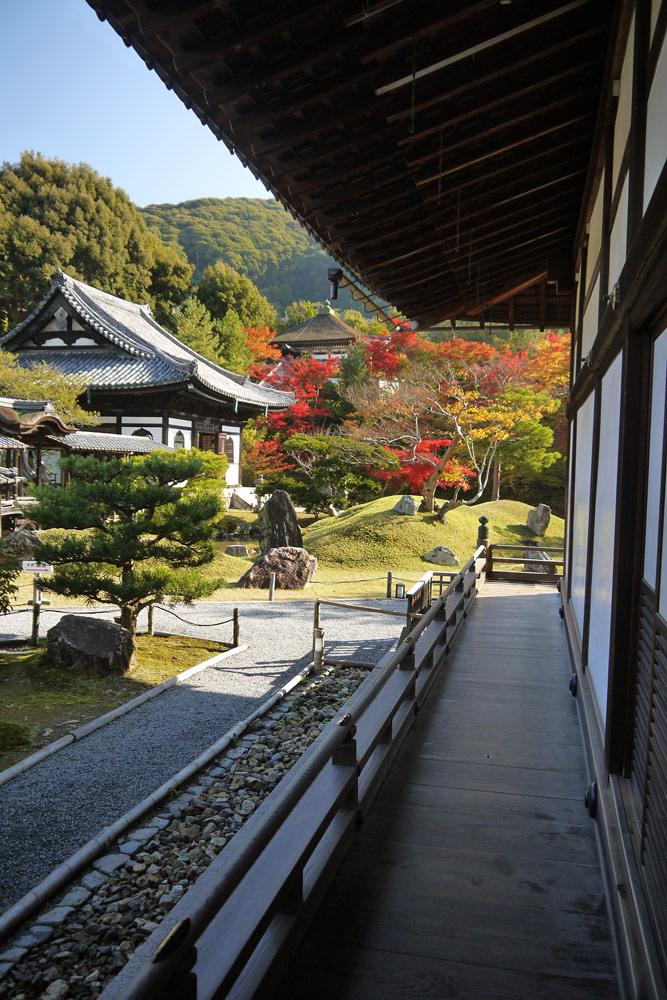 高台寺の紅葉の写真素材