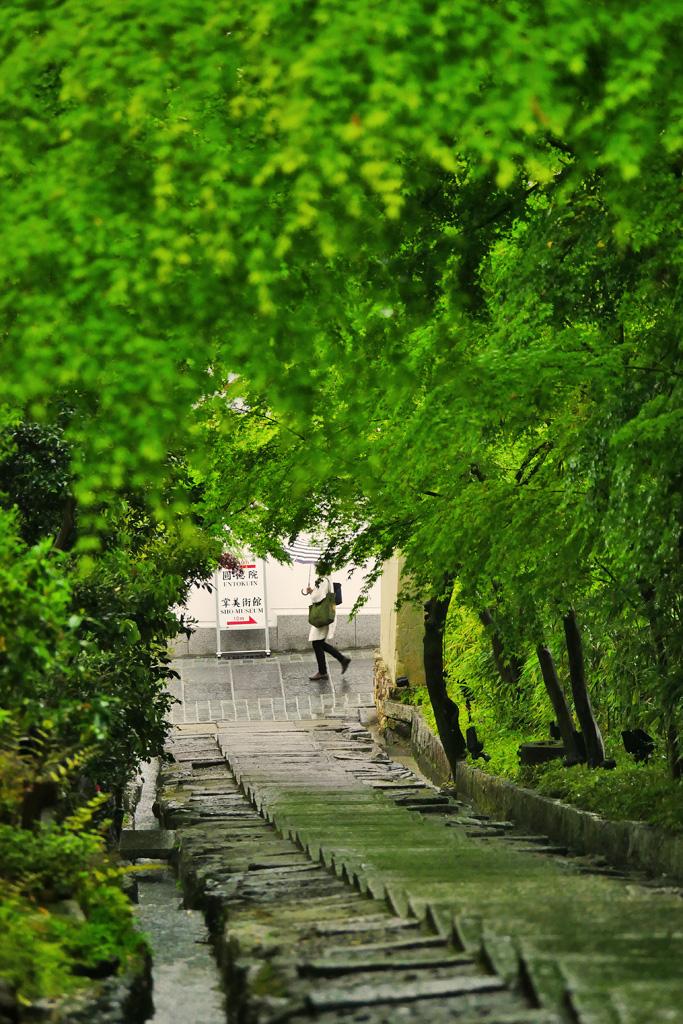 雨の高台寺台所坂の写真素材