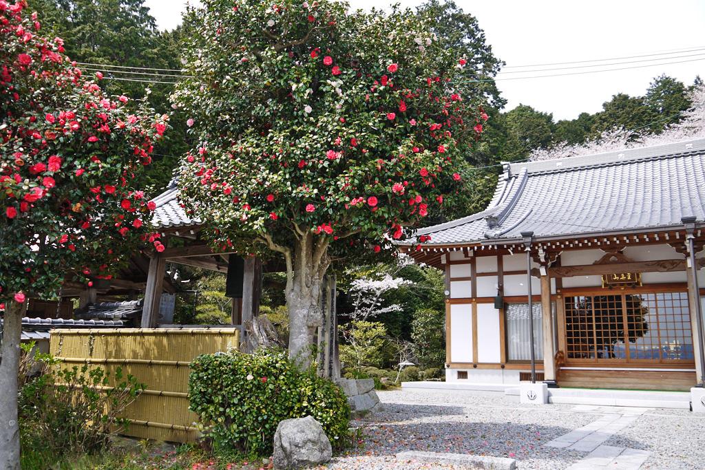 小松寺の写真素材