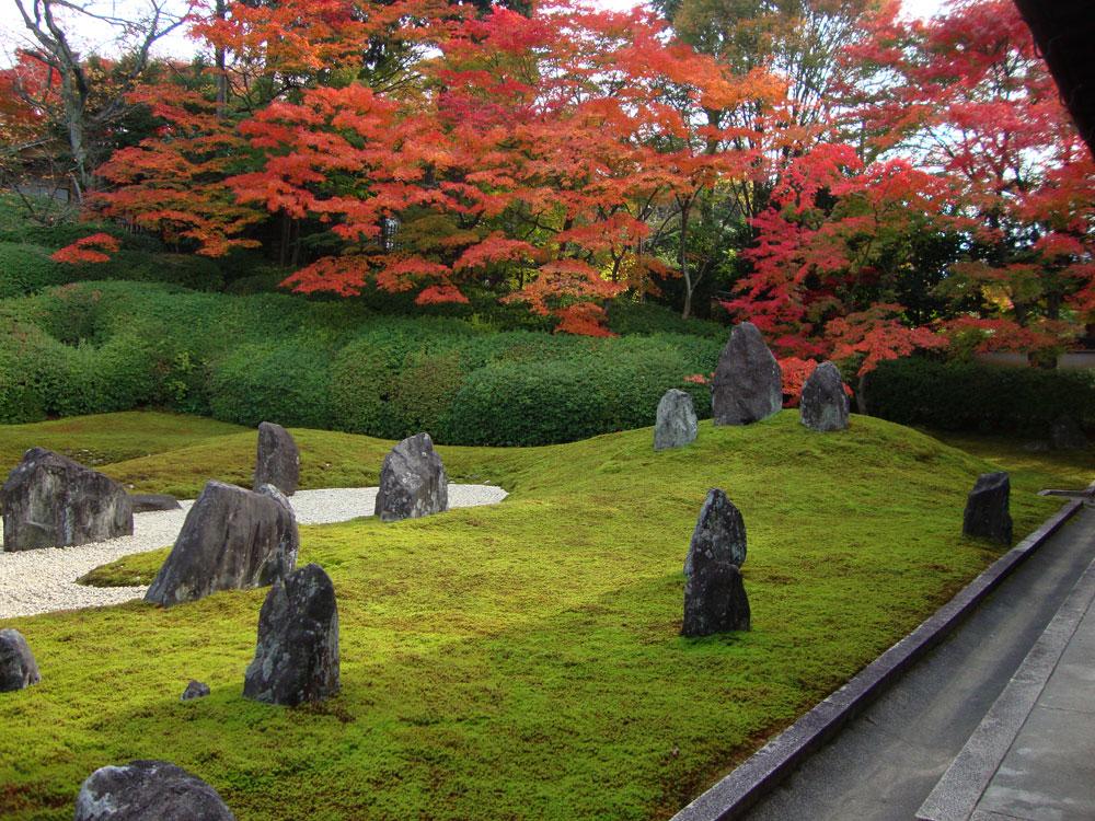 光明院の紅葉の枯山水庭園