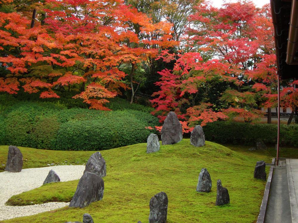光明院の紅葉の写真素材
