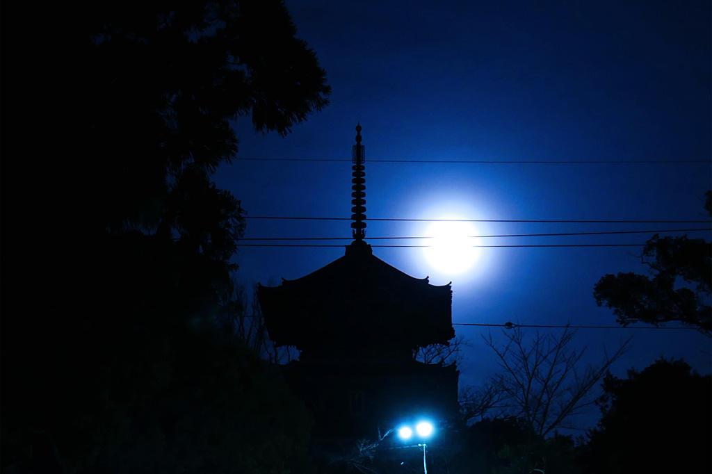 金戒光明寺の夜景の写真素材