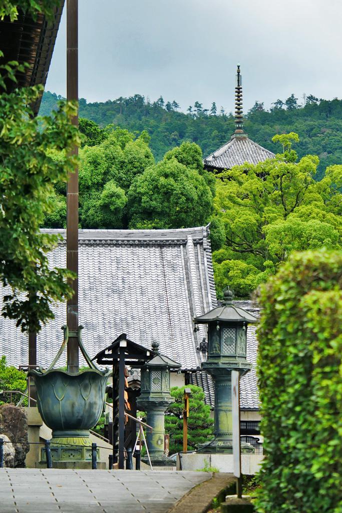 金戒光明寺の三重塔 写真素材