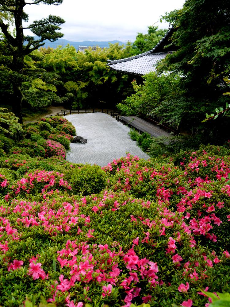 金福寺の皐月の写真素材
