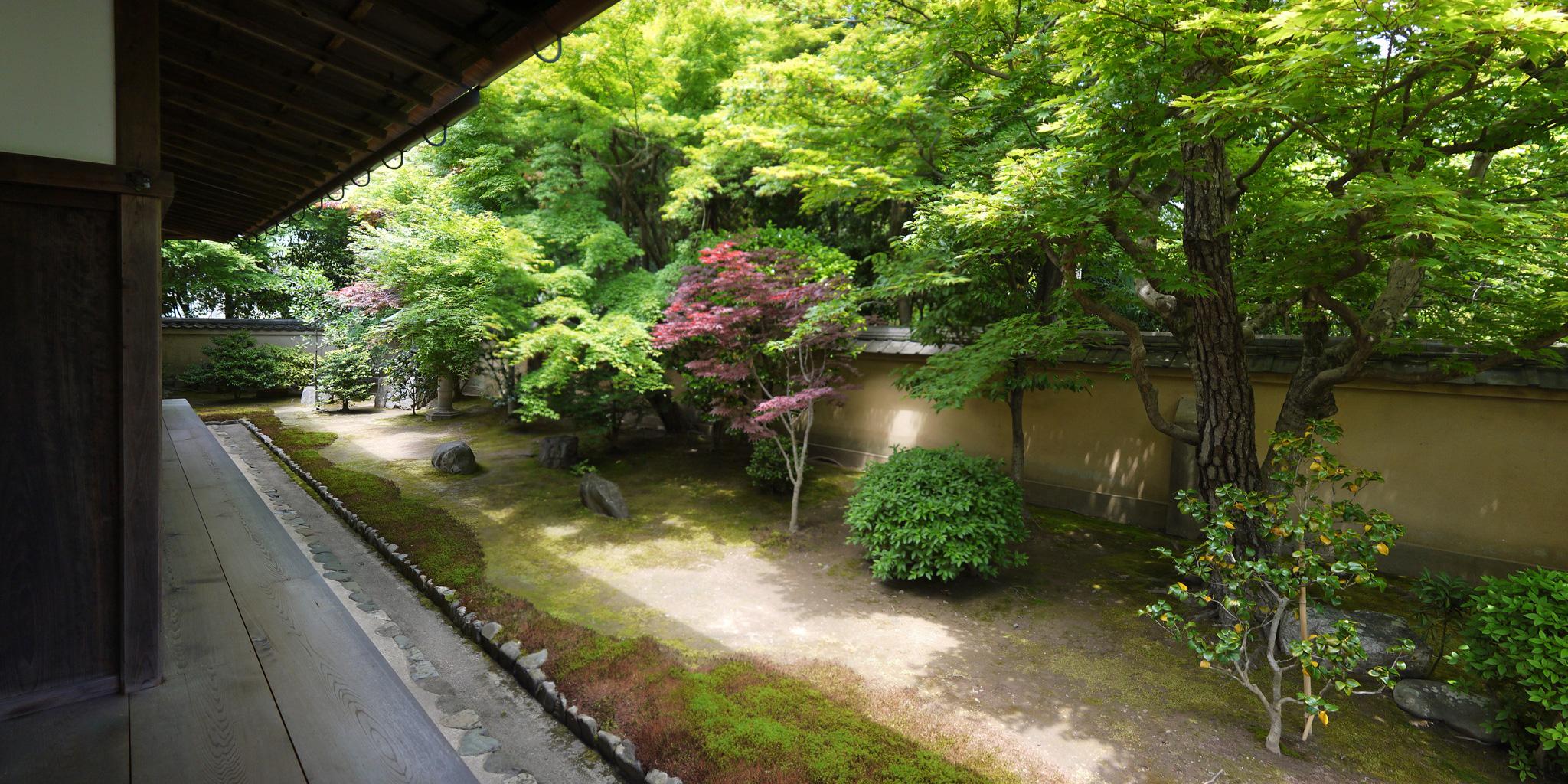 大徳寺 興臨院の枯山水