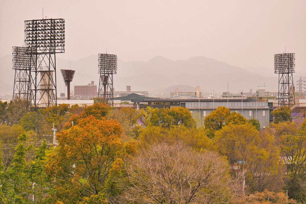 京都の黄砂の写真素材