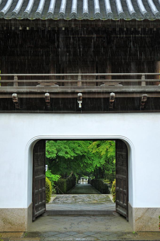 雨 興聖寺の写真素材