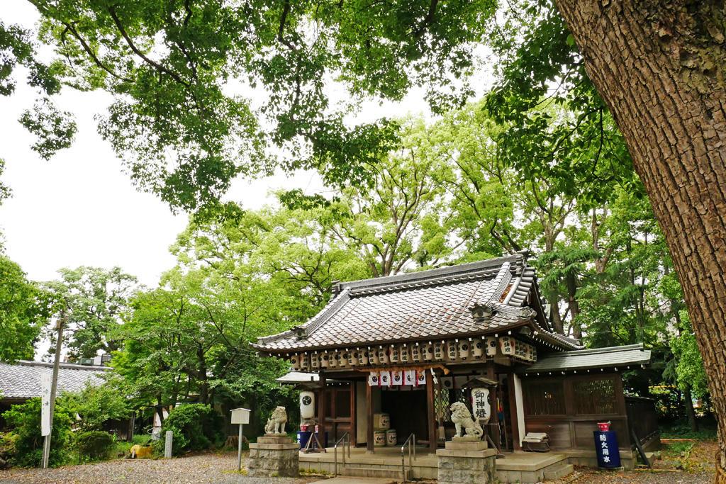 神足神社の写真素材