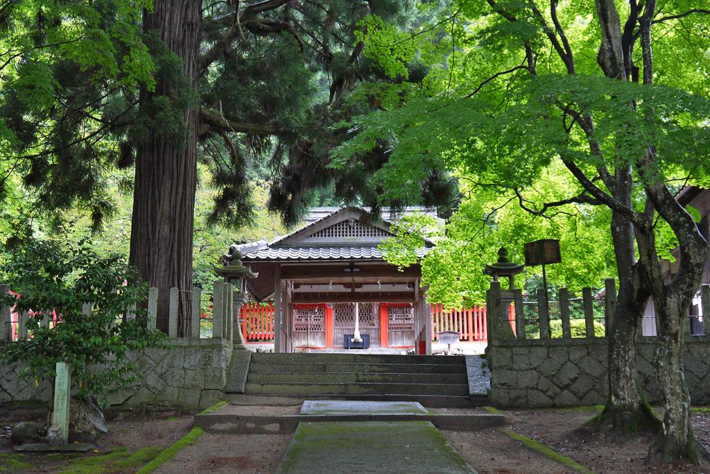 九手神社の写真素材
