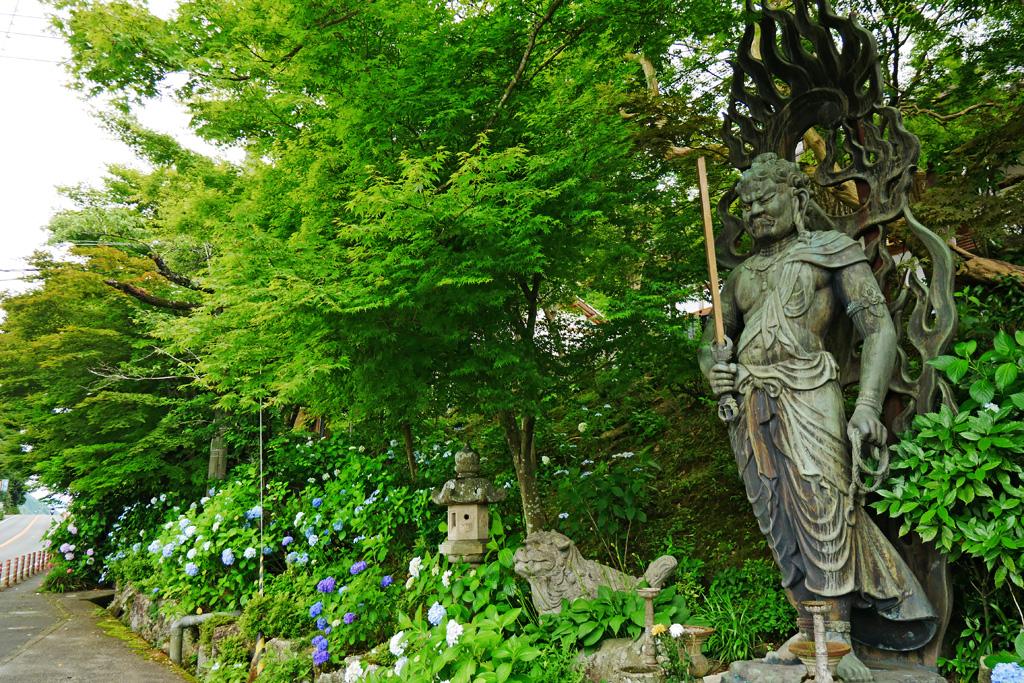 園部 教伝寺の写真素材