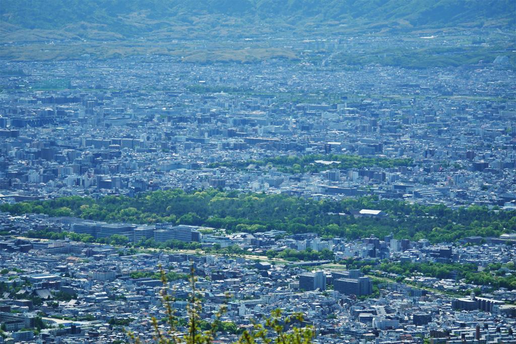京都御苑の写真