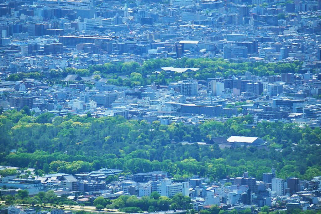 京都御苑と二条城の写真