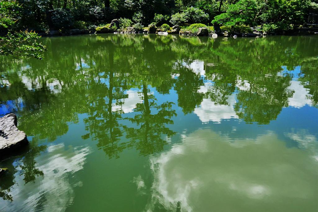 京都御苑の九條池の写真素材