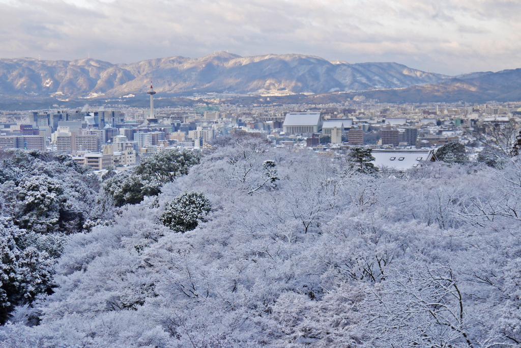雪の京都タワーの写真素材