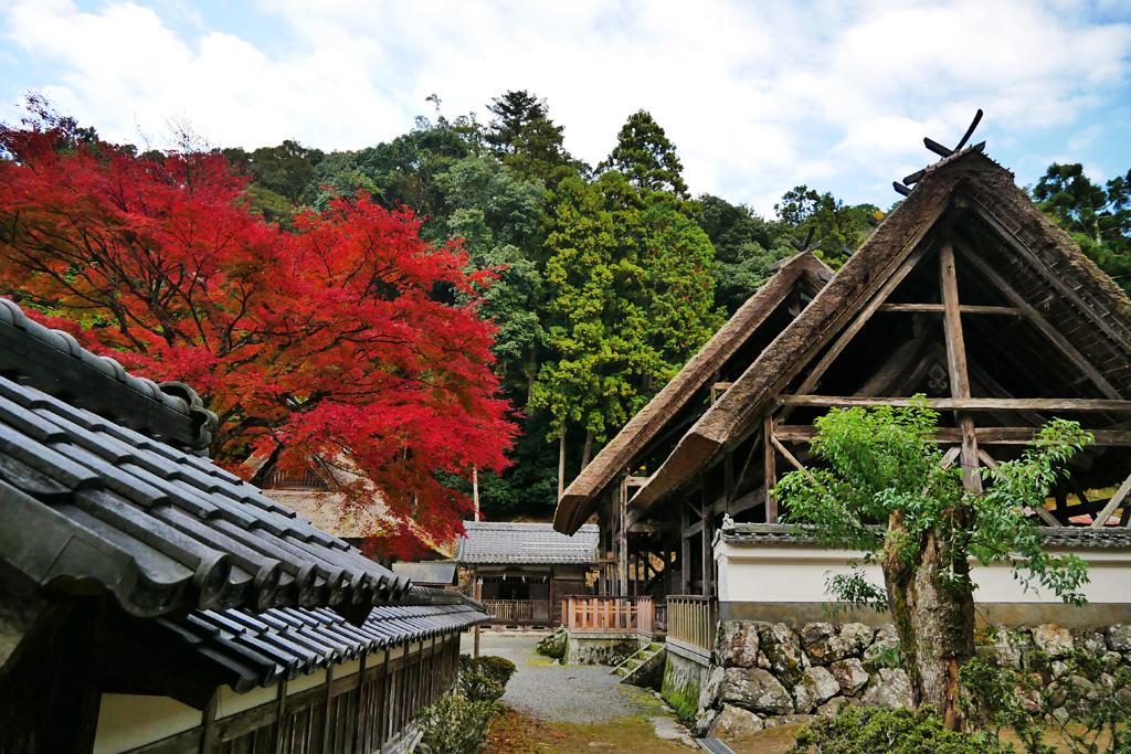 摩気神社の写真素材
