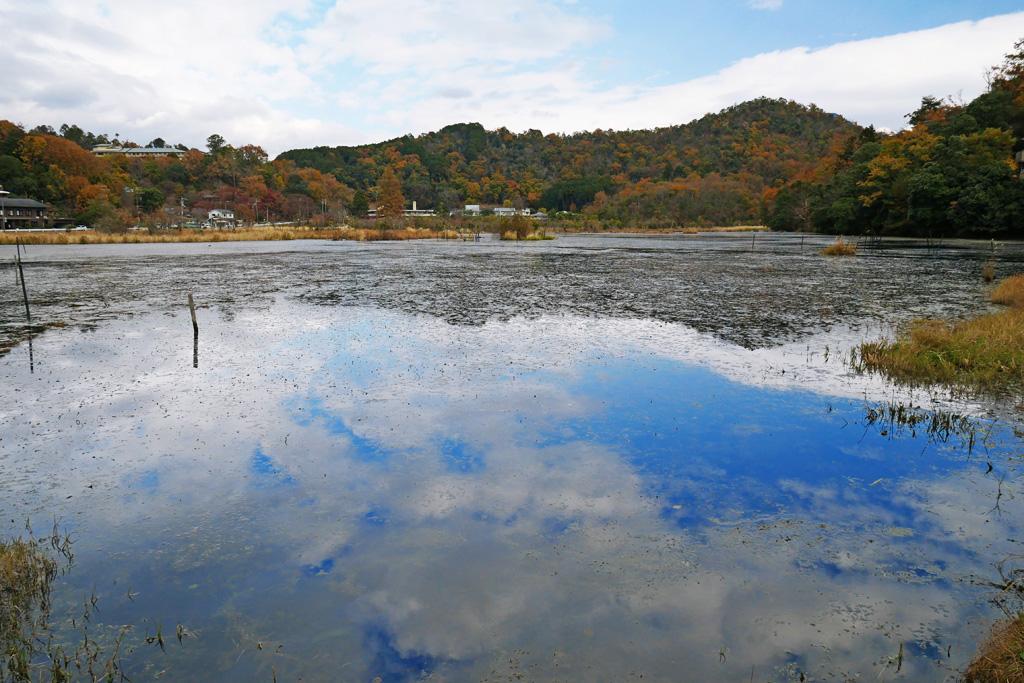 深泥池の写真素材