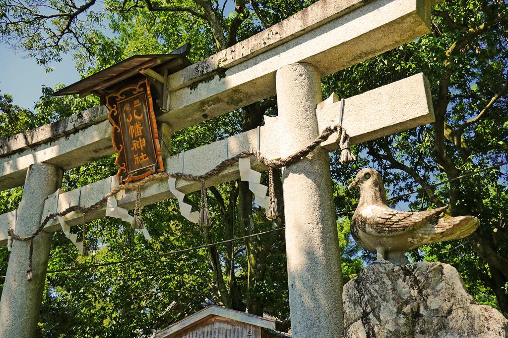 三宅八幡宮の夏の写真素材