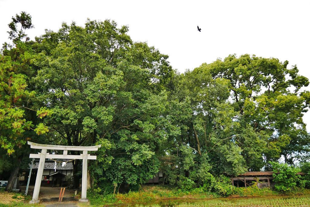 水主神社の写真素材