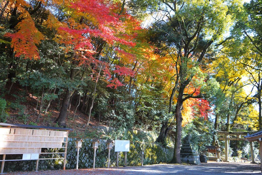 山科 諸羽神社の紅葉