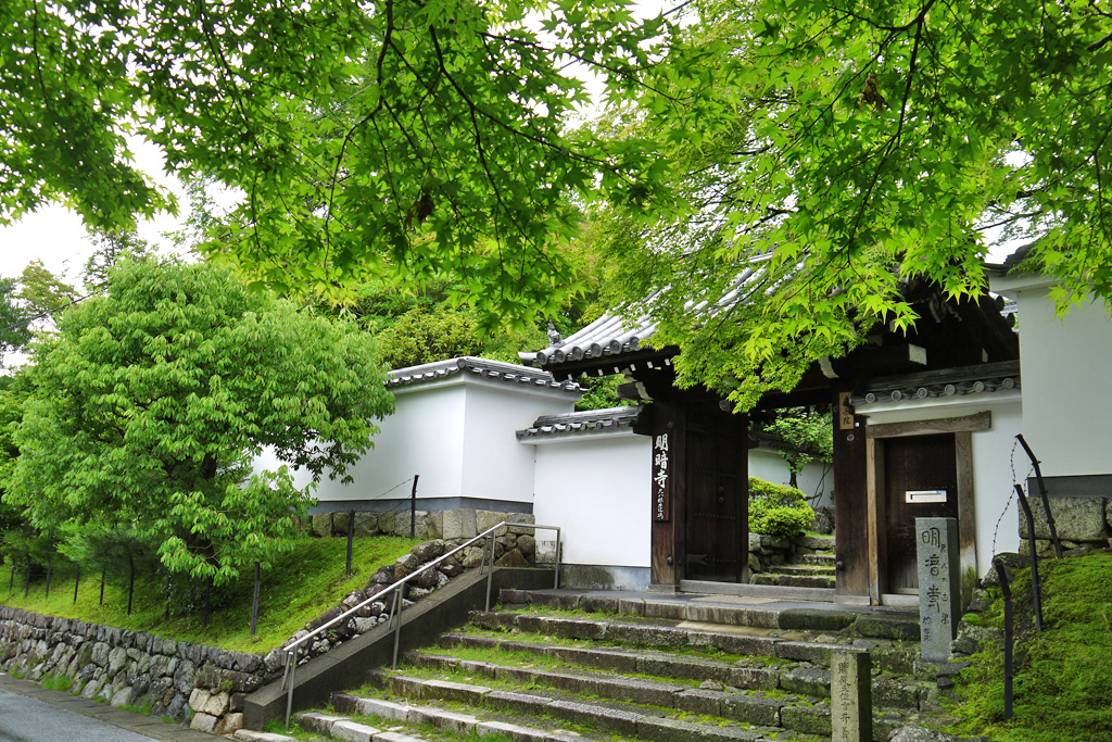 東福寺 明暗寺の写真素材