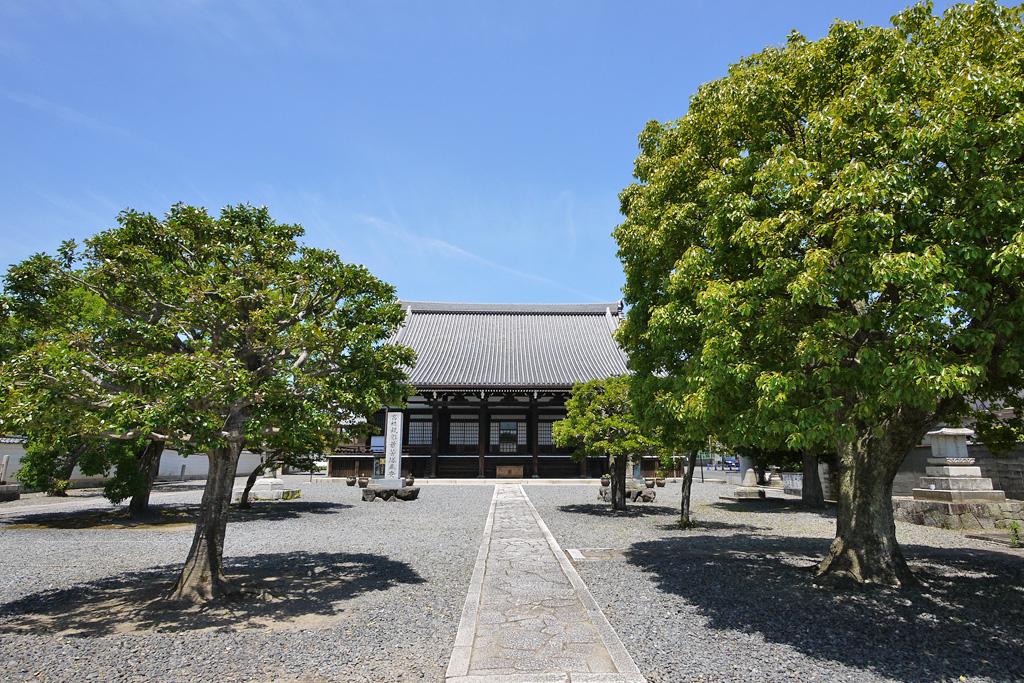 妙覚寺祖師堂の写真