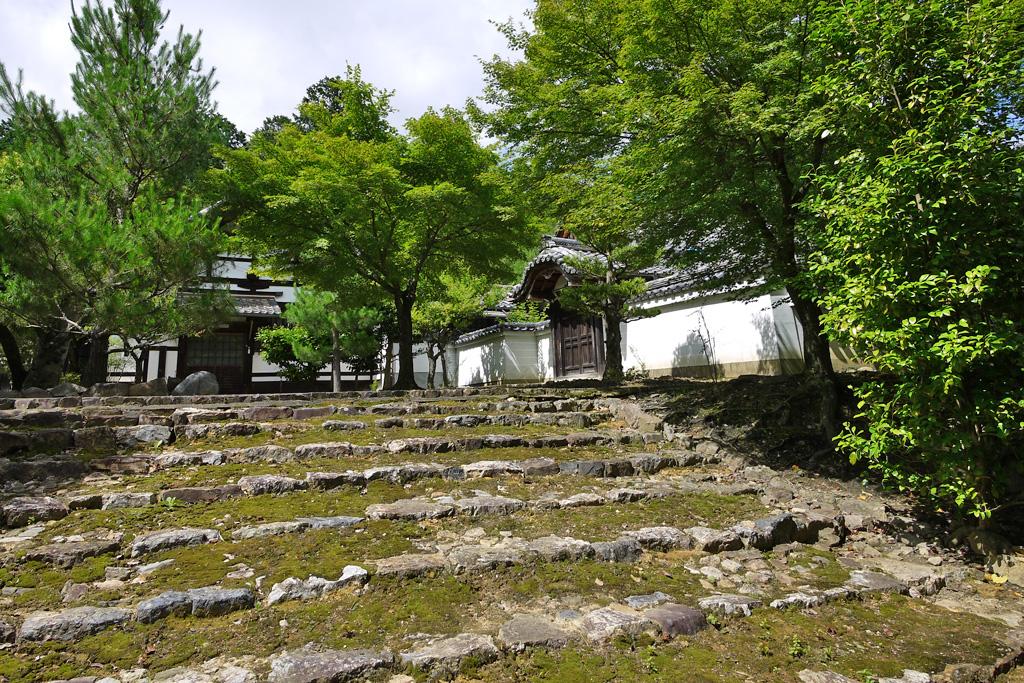 妙光寺の写真素材
