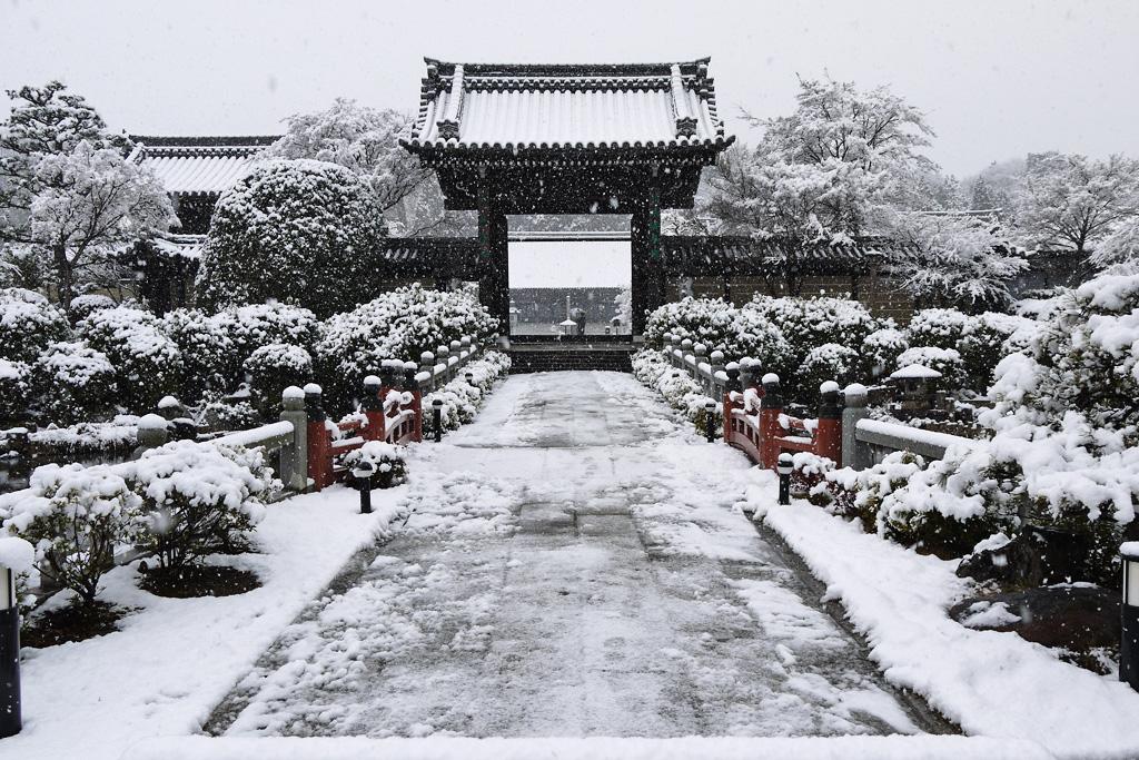 妙満寺の雪景色の写真素材