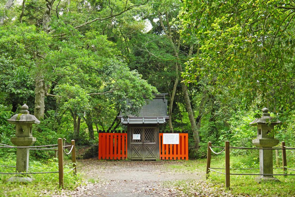 京都府立植物園 半木神社の写真素材