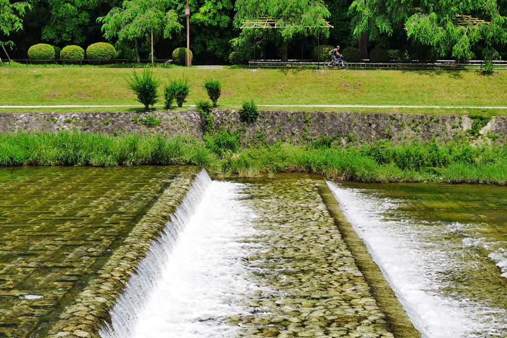 京都 賀茂川なからぎの道 写真素材