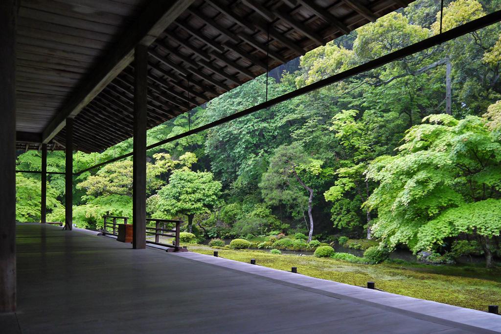 雨の南禅院の写真素材