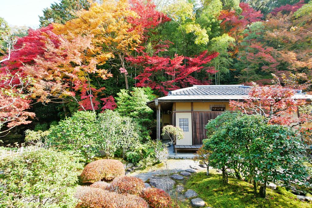 南禅寺の紅葉の写真素材