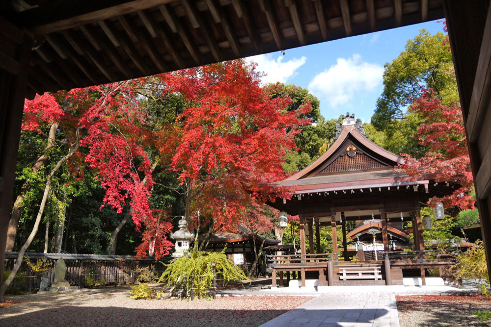 梨木神社の紅葉の写真素材