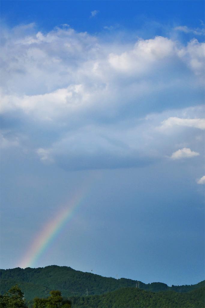 京都の虹の写真素材