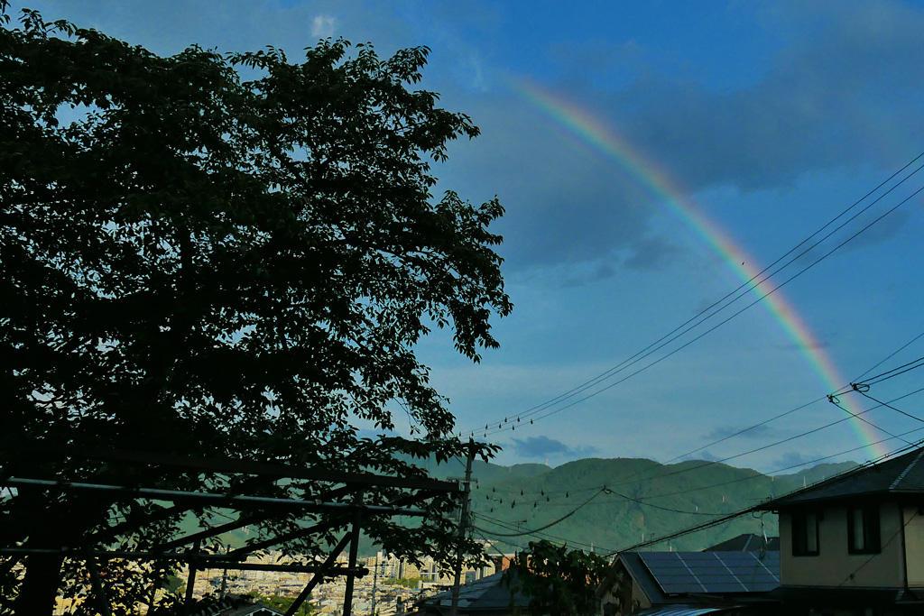 虹の写真素材