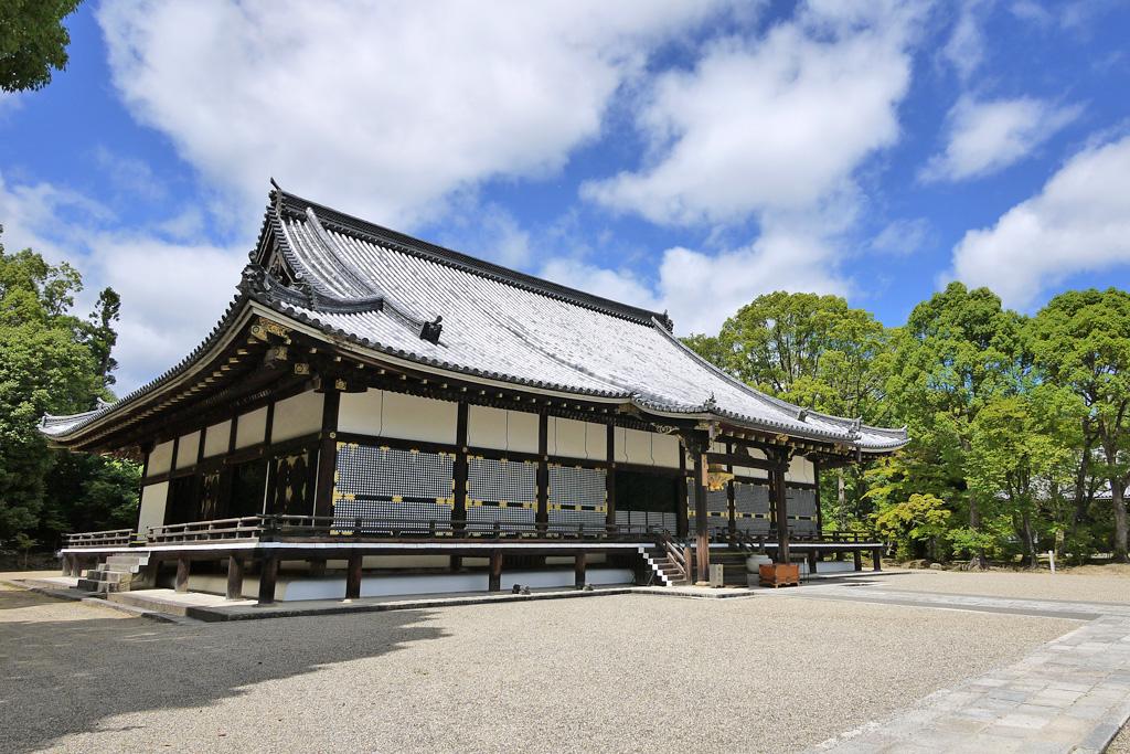京都 仁和寺の写真素材