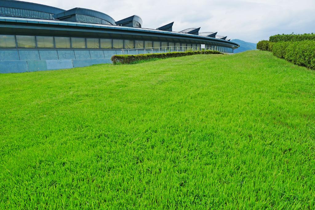 緑の丘 西京極総合運動公園の写真素材
