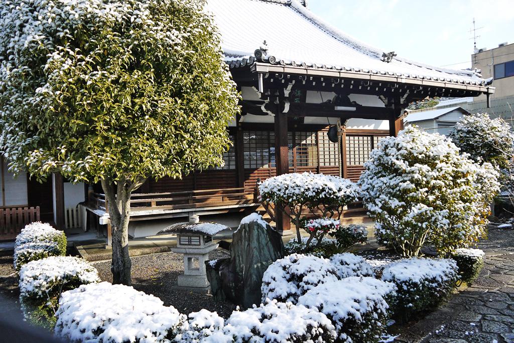 日體寺の写真素材