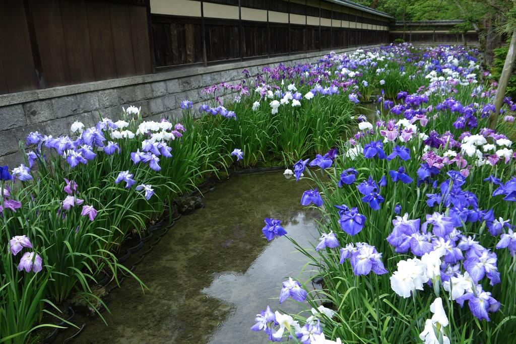 野村別邸碧雲荘の写真素材
