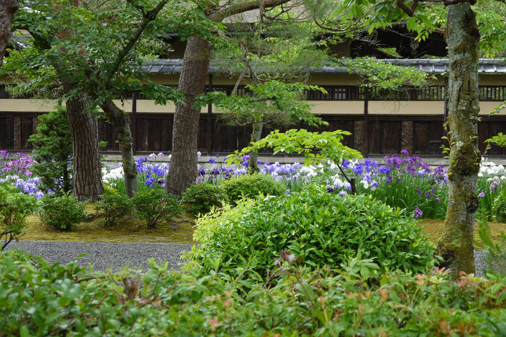 野村別邸の写真素材