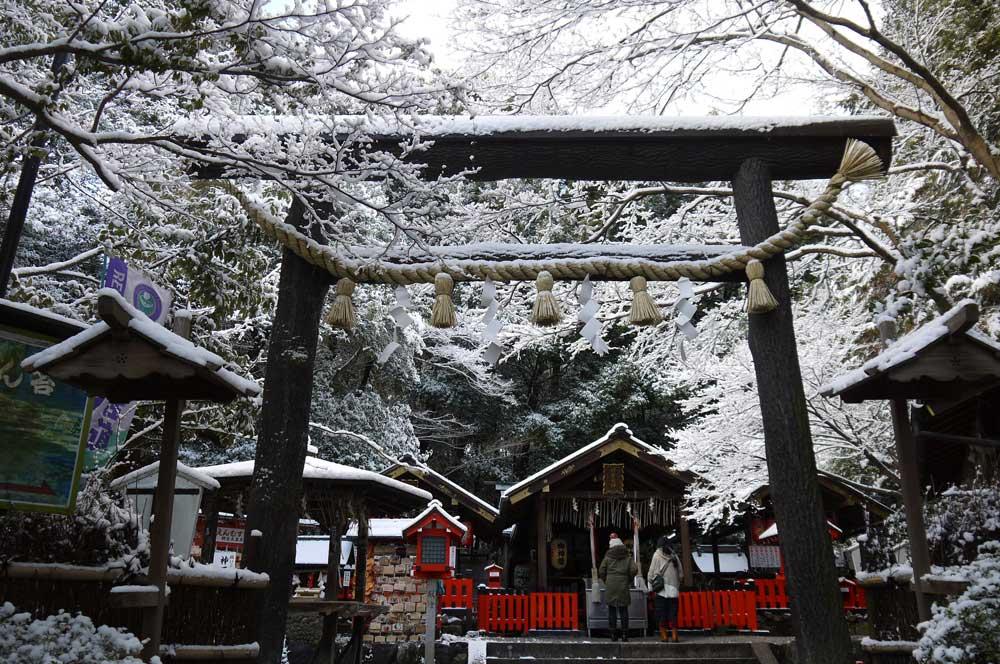 野宮神社の雪景色の写真素材