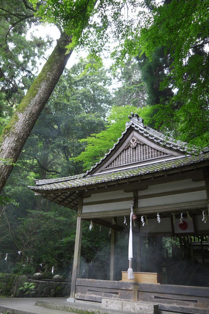小倉神社の写真