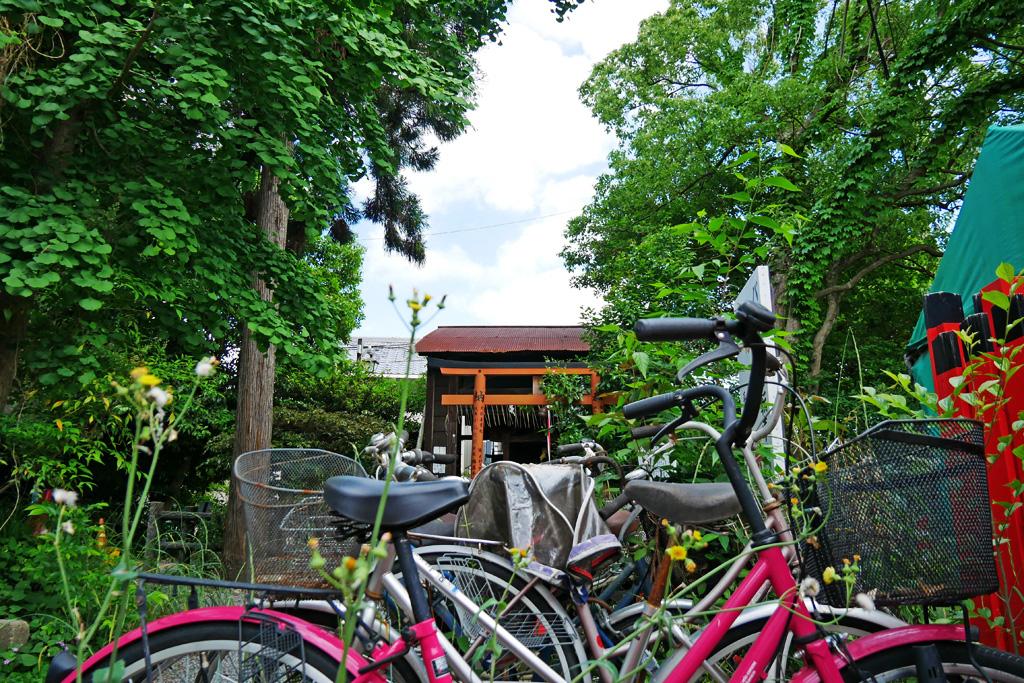 大井神社の写真素材