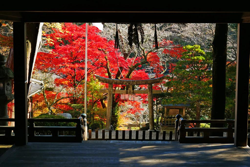 奥山田天神社の紅葉写真素材