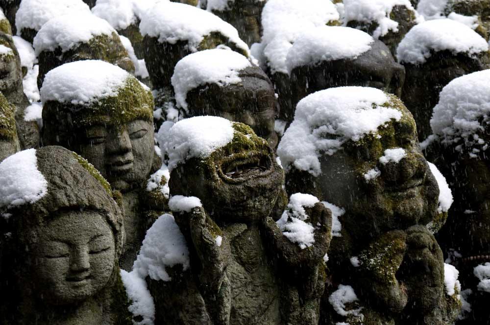愛宕念仏寺の雪景色の写真素材