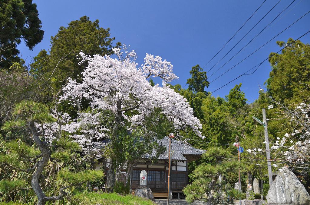 大谷寺の写真素材