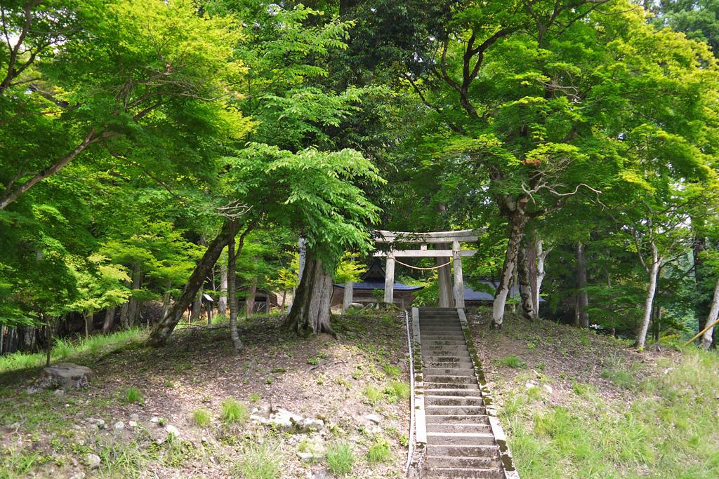 乙女神社の写真素材