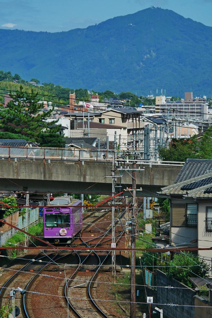 嵐電嵐山駅と比叡山の紫陽花の写真素材